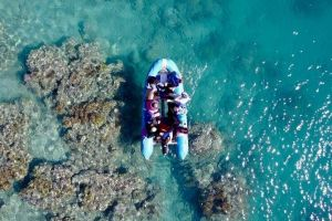 Glass-bottom boat tour with Whitehaven Beach - Attractions Melbourne